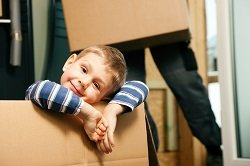 Domestic Removals Forestdale